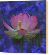 Lotus Flower In Blue Wood Print