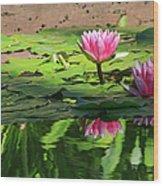 Lotus Flower Reflections Wood Print