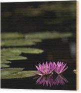 Lotus Reflections Wood Print