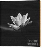 Lotus - Square Wood Print