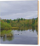 Lough Eske In The Morning Wood Print