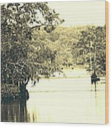 Louisiana Chicot State Park  Wood Print