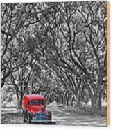 Louisiana Dream Drive Bw Wood Print