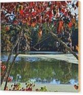 Louisiana Fall Wood Print