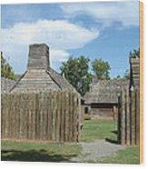 Louisiana Fort Wood Print