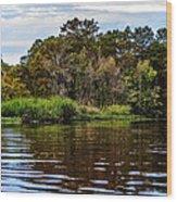 Louisiana Lake II Wood Print