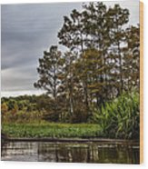 Louisiana Landscape Wood Print