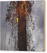 Louisiana Light Post Wood Print