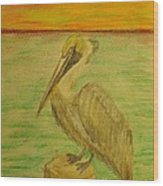 Louisiana State Bird Wood Print