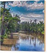 Louisiana Swamp Wood Print by Tammy Smith