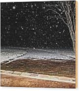 Louisiana Winter Wood Print by Hannah Miller