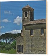 Lourmarin Castle Wood Print