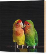 Love Birds At First Sight Wood Print