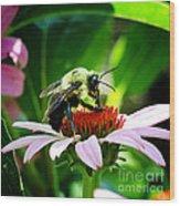 Love Bug Wood Print