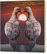 Love Dove Birds At Sunset Wood Print