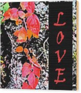 Love Fall Edition Wood Print