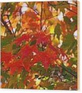 Love Fall Wood Print