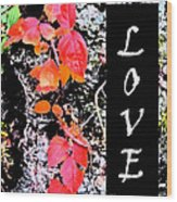 Love Fall White Edition Wood Print