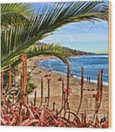 Love In Laguna Beach By Diana Sainz Wood Print