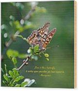 Love Is Like A Butterfly Wood Print