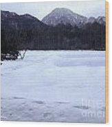 Love Lab Evening Snow 3 Wood Print