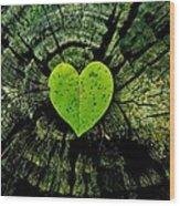 Love Nature  Wood Print