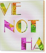 Love Not Hate Rainbow Crazy Daisies Wood Print