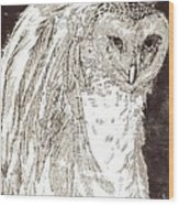 Love Owl Wood Print