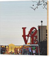 Love Statue And The Art Museum Wood Print