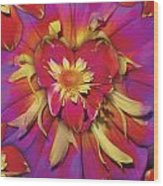 Loveflower Orangered Wood Print