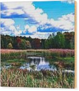 Lovely Day Wood Print by Michelle and John Ressler