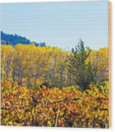 Lovely Fall Colors Wood Print