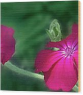 Lovely Flowers Wood Print