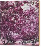 Lovely In Pink Wood Print