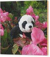Lovely Pink Flower Wood Print