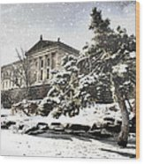 Lovely Snow On The Museum Wood Print