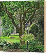 Lovely Suburban Front Yard Wood Print