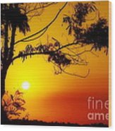 Lovely Sunset Wood Print by George Paris