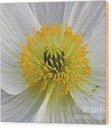 Lovely White Flower Square Wood Print