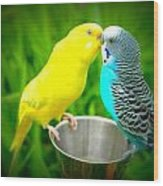 Lover Birds Wood Print