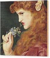 Loves Shadow, 1867 Wood Print