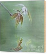 Loving Greens II Wood Print