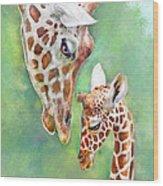 Loving Mother Giraffe2 Wood Print