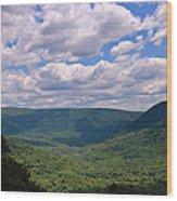 Loving The Laurel Highlands Wood Print