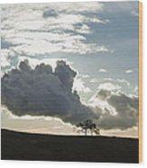 Low Clouds Wood Print