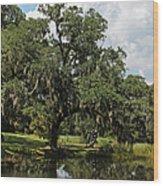 Low Country Beauty II Wood Print