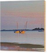 Low Tide At Crystal Beach Wood Print