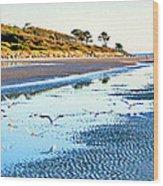 Low Tide At Jekyll Island Wood Print