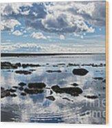 Low Tide At Lyme Regis 2 Wood Print