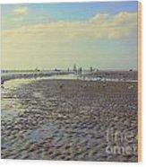 Low Tide At Siesta Beach Wood Print